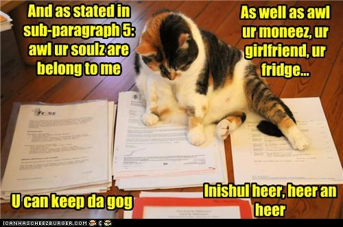 agreement,caption,captioned,cat,contract,here,paragraph,pointing,sign,signature,stated