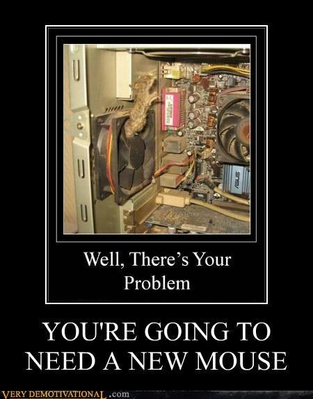 broken,computer,eww,mouse,old,Sad