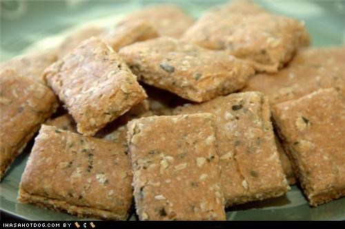 crunchy granola bars,delicious,dog treats,food,homemade,homemade goggie treat ob teh week,noms,snacks,treats