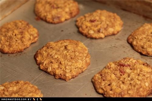 Homemade Goggie Treat ob teh Week: Cheese & Bacon Cookies!