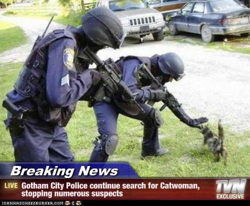 Breaking News - Gotham City Police continue search for Catwoman, stopping numerous suspects