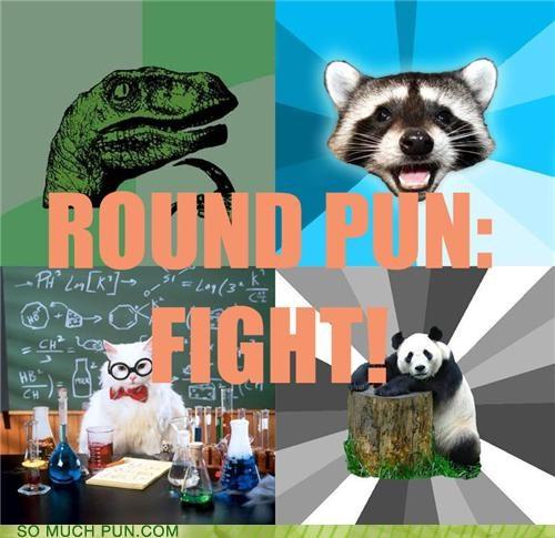 Bad Pickup Line Panda,battle royale,chemistry cat,contest,Lame Pun Coon,Memes,philosoraptor,poll