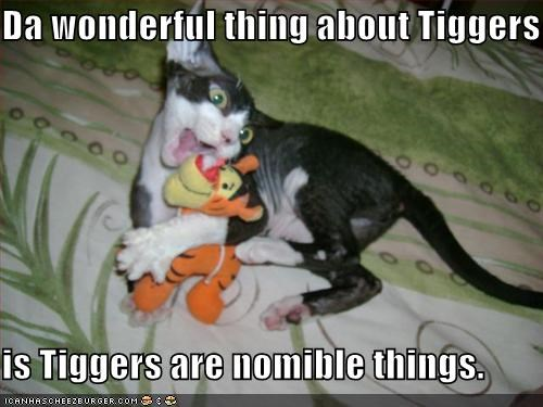 Da wonderful thing about Tiggers  is Tiggers are nomible things.