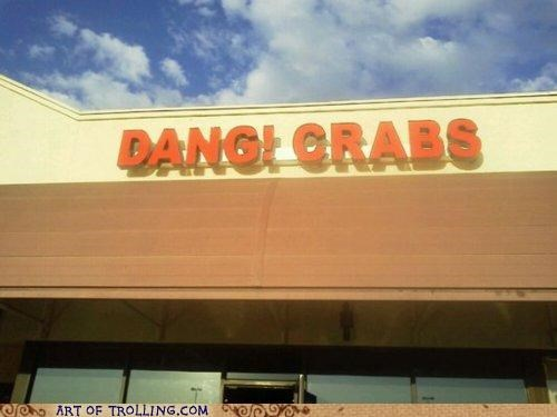 crabs,dang,IRL,sign,wtf