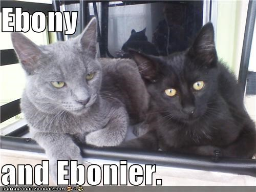 Ebony  and Ebonier.