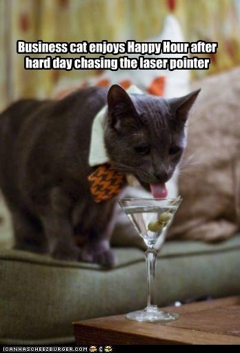 Business cat enjoys Happy Hour