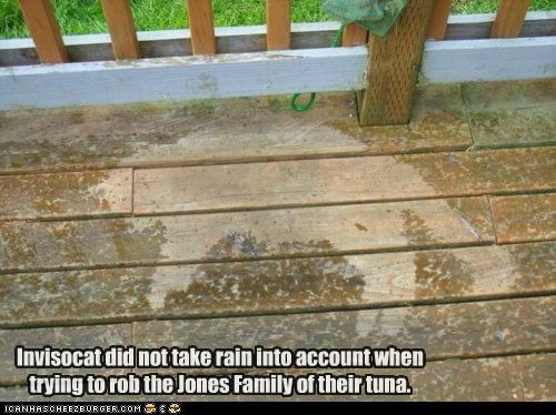 Invisocat did not take rain into account when trying to rob the Jones Family of their tuna.