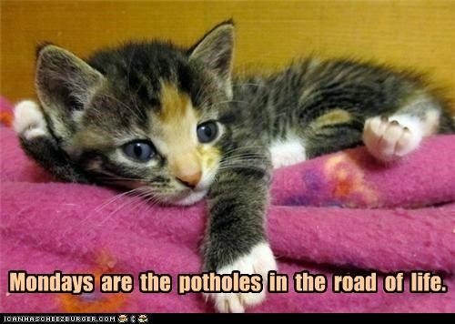 Mondays  are  the  potholes  in  the  road  of  life.