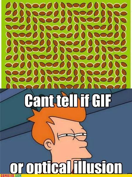 fry meme,gifs,optical illusion,the internets