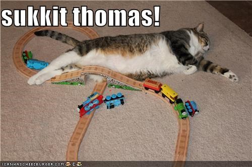 animals,Cats,I Can Has Cheezburger,suck it,thomas the tank engine,toys,trains