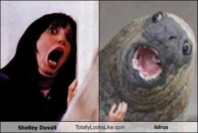 actress,actresses,classics,lolrus,screaming,shelley duvall,the shining,walrus