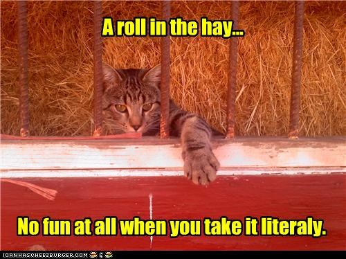 A roll in the hay...