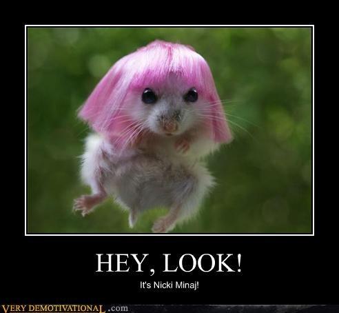 hair,hilarious,mouse,niki minaj,wtf