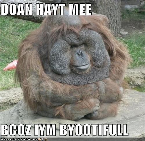 Doan Hayt Mee