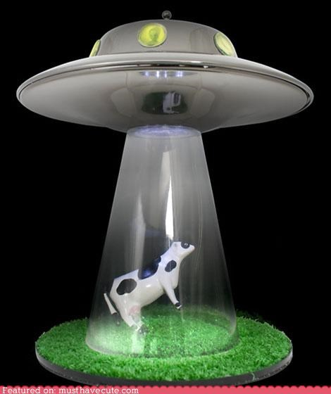 abduct,best of the week,cow,flying saucer,lamp,spaceship,ufo