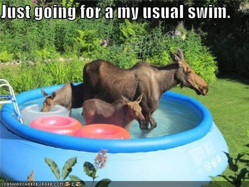 Just going for a my usual swim.