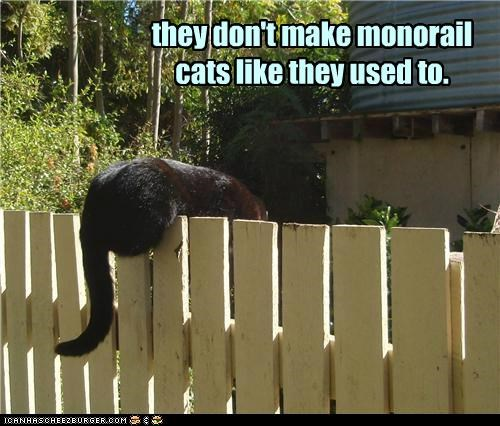 they don't make monorail cats like they used to.