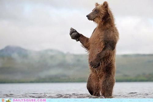 acting like animals,bear,bittersweet,dock,fishermen,fishing,goodbye,journey,trip,waving,worried