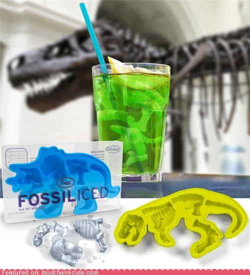 bones,dinosaur,ice,ice cubes,tray