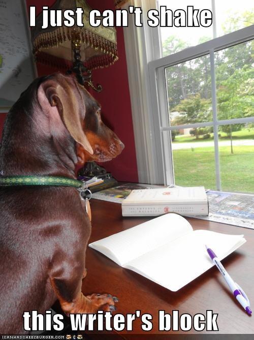 dachshund,paper,pen,story,writer,writers block,writing