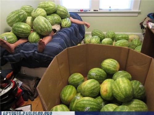 passed out,suddenly,thousands of them,watermelons
