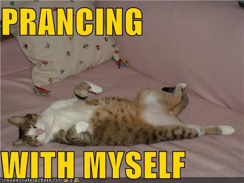 caption,captioned,cat,dancing with myself,myself,parody,prancing,sleeping,song,upside down