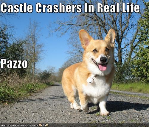 Castle Crashers In Real Life Pazzo