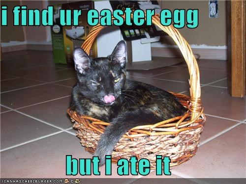 i find ur easter egg  but i ate it