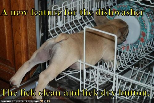 A new feature for the dishwasher  The lick clean and lick dry button.