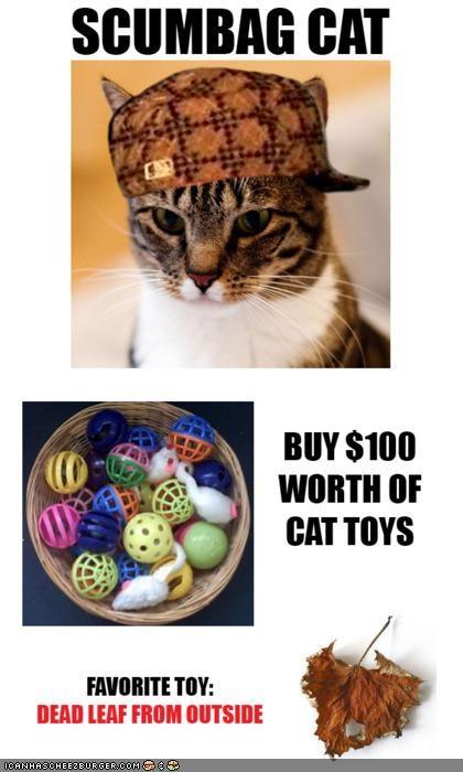 leaves,memecats,Memes,scumbag,Scumbag Steve,toys