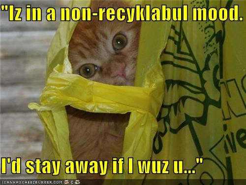 """Iz in a non-recyklabul mood.  I'd stay away if I wuz u..."""