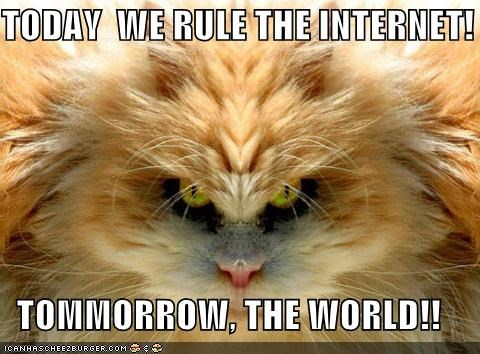 TODAY  WE RULE THE INTERNET!  TOMMORROW, THE WORLD!!