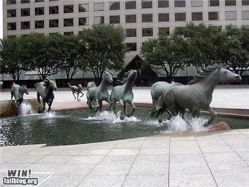 Fountain WIN