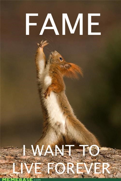Fame Squirrel