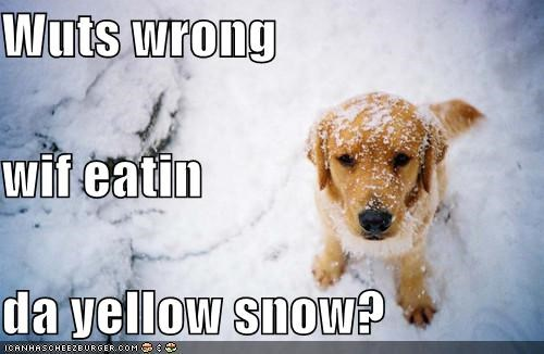 Wuts wrong wif eatin da yellow snow?