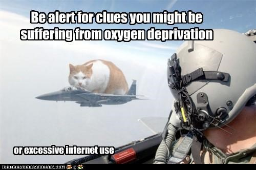 alert,be,caption,captioned,cat,clues,deprivation,excessive,internet,lolwut,might,oxygen,photoshop,plane,suffering,use