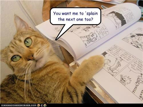 calvin and hobbes,caption,captioned,cat,explain,me,next,one,question,too,want,you