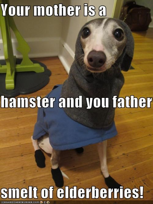 Your mother is a  hamster and you father smelt of elderberries!