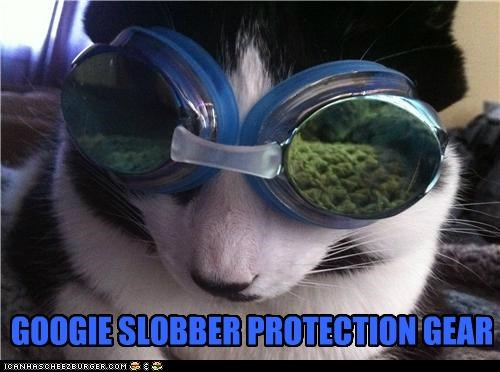 GOOGIE SLOBBER PROTECTION GEAR