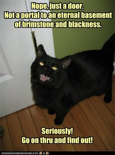 basement,basement cat,blackness,brimstone,caption,captioned,cat,door,eternal,find,go,just,lying,nope,not,Portal,seriously