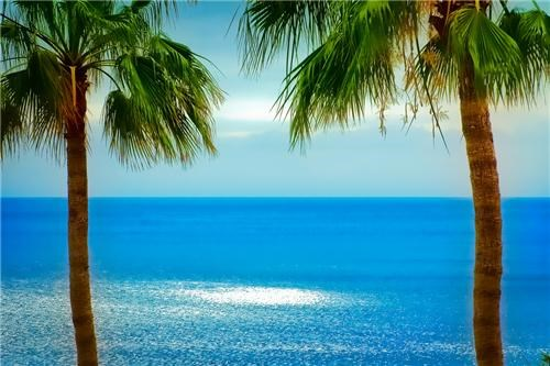 blue,canary islands,islands,ocean,palm trees,Spain,spanish,Tropical,western africa