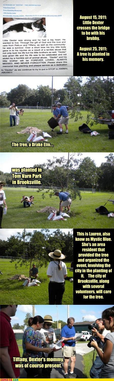 Memorial Tree Planting Ceremony Pt.1
