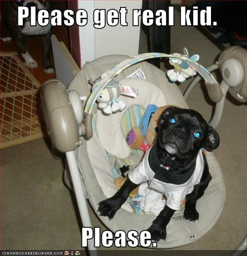 baby,child,clothes,clothing,pug