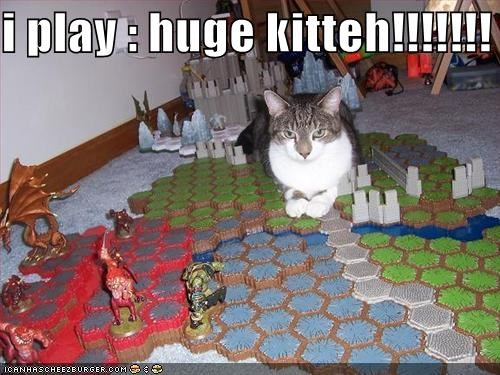 i play : huge kitteh!!!!!!!