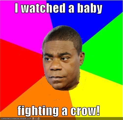 I watched a baby  fighting a crow!