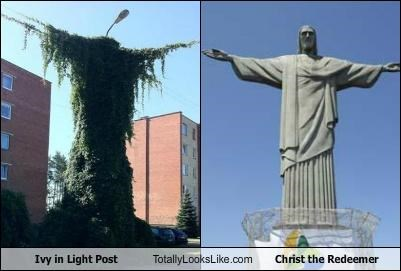 christ the redeemer,coincidence,foliage,ivy,open arms,plant,plants,statue