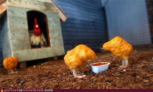 chicken,nuggets,sauce,wtf