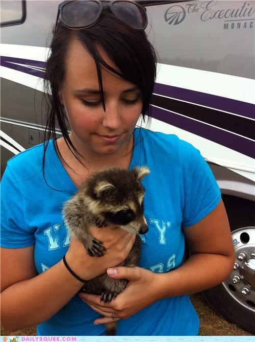 Bandit the baby raccoon!