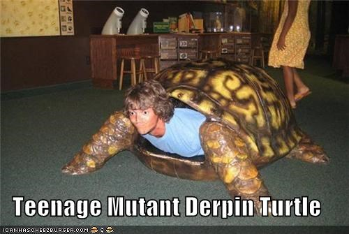Teenage Mutant Derpin Turrrrtle