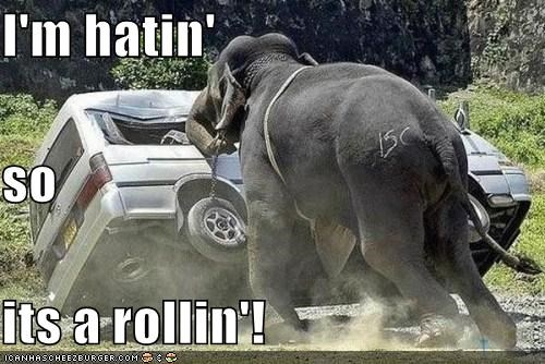 I'm hatin' so its a rollin'!
